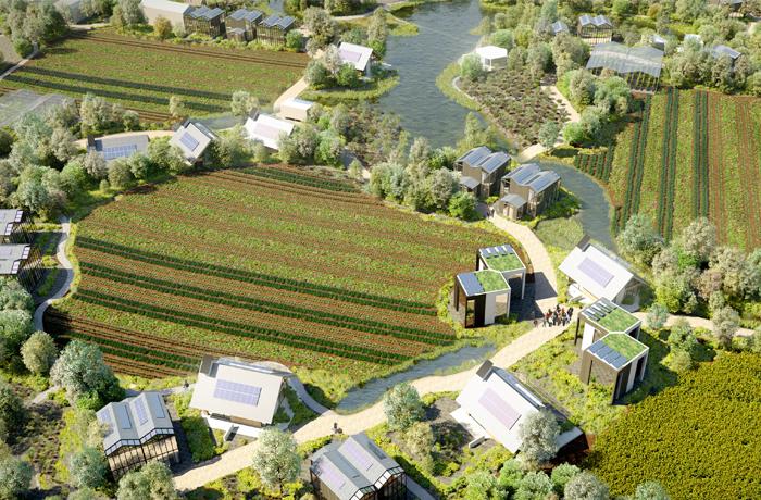 В пригороде Амстердама построят блокчейн-поселок