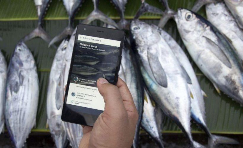 Питер Габриэль вложился в продовольственный стартап Provenance