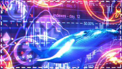 Дельные советы криптоинвесторам-новичкам