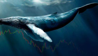 Внебиржевой рынок: влияние на курс биткоина и альткоинов