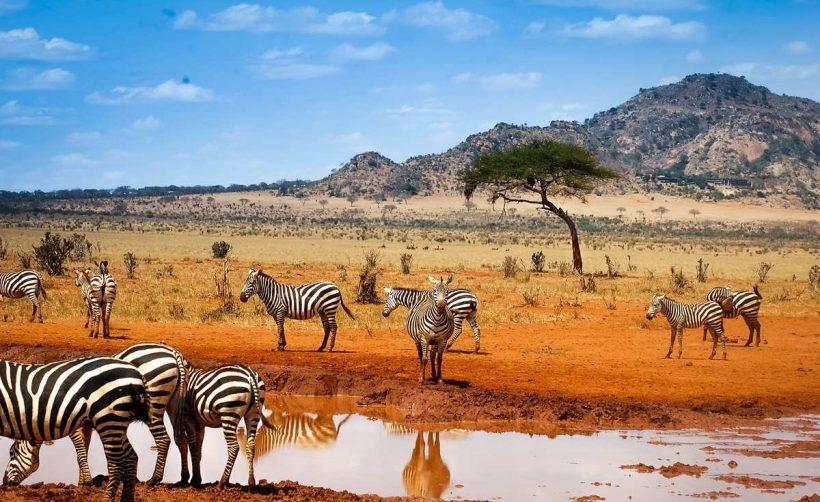 Binance собирается расширяться в Африку