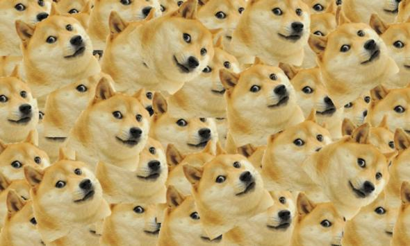 25%: курс Dogecoin вырос за три дня