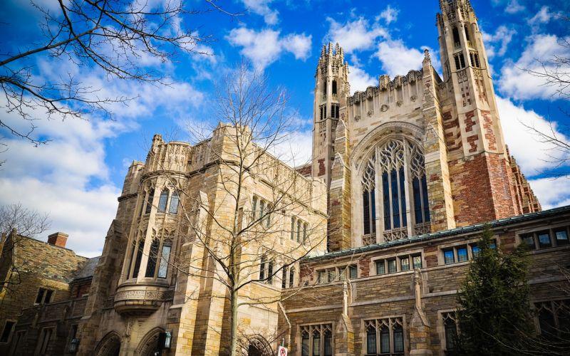 Университеты и колледжи учатся обрабатывать донаты в биткоине