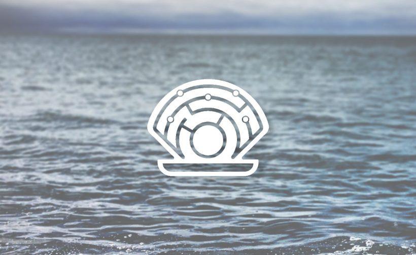 Команда Oyster Protocol хочет вернуть средства, украденные главой стартапа