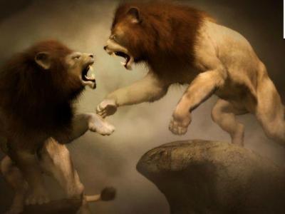 Битва титанов: самые прибыльные криптовалюты из крупнейших на рынке