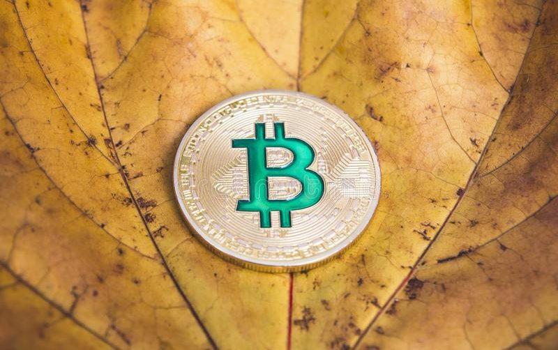 93% крупнейших криптовалют потеряли в цене по итогам сентября